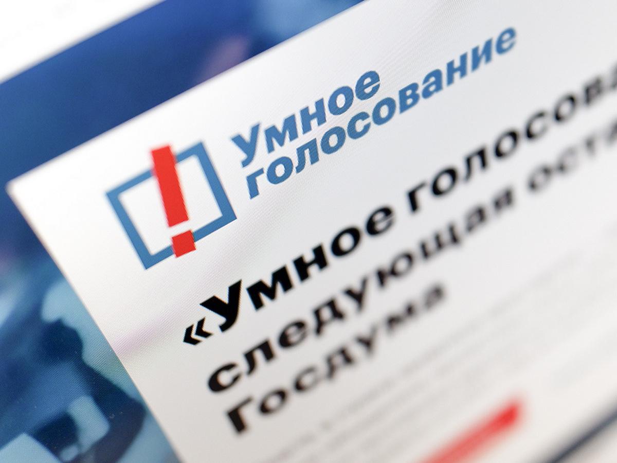 Роскомнадзор потребовал прекратить техническую поддержку сайта «Умное голосование»